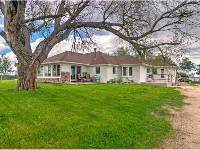 31087 County 94 Road, Simla, CO 80835 (MLS #9377025) :: 8z Real Estate
