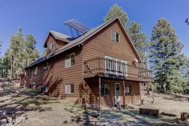 23891 Black Bear Trail, Conifer, CO 80433 (#9378166) :: The Galo Garrido Group