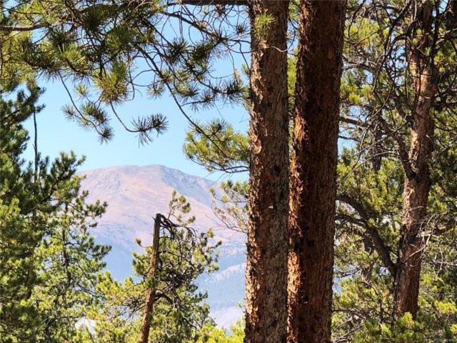 776 Peak View Drive, Leadville, CO 80461 (MLS #9379892) :: 8z Real Estate