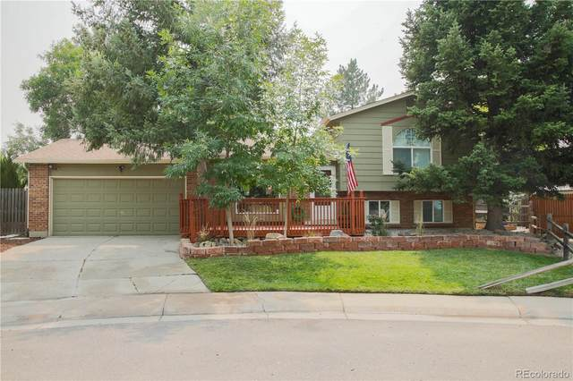 7993 S Everett Street, Littleton, CO 80128 (#9381185) :: The DeGrood Team