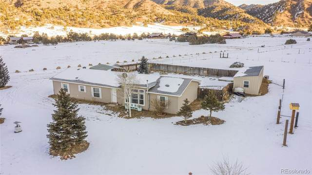 702 Shannon Road, Cotopaxi, CO 81223 (#9382637) :: iHomes Colorado