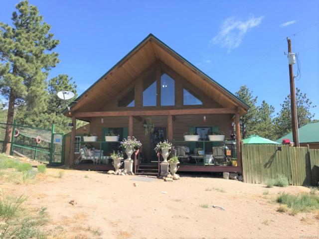493 County Road 323, Westcliffe, CO 81252 (#9382932) :: The HomeSmiths Team - Keller Williams