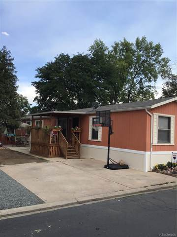 1500 W Thornton Parkway #421, Thornton, CO 80260 (MLS #9384163) :: Bliss Realty Group