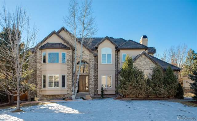 9404 S Shadow Hill Circle, Lone Tree, CO 80124 (#9387481) :: The Peak Properties Group