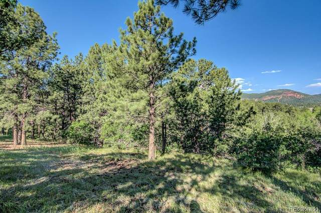18755 Rockbrook Road, Palmer Lake, CO 80133 (#9388346) :: The Harling Team @ Homesmart Realty Group