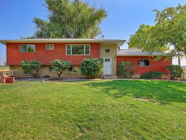Address Not Published, , CO  (MLS #9395844) :: 8z Real Estate