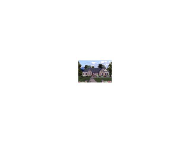 1058 Fremont Drive, Larkspur, CO 80118 (MLS #9401486) :: 8z Real Estate