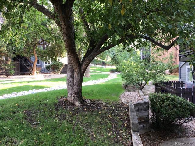 7893 Allison Way #101, Arvada, CO 80005 (MLS #9405427) :: Find Colorado