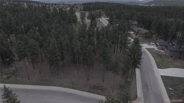 605 Chipmunk Drive, Woodland Park, CO 80863 (#9410429) :: The Margolis Team