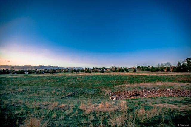 14149 Stone Eagle Place, Colorado Springs, CO 80921 (#9412783) :: James Crocker Team