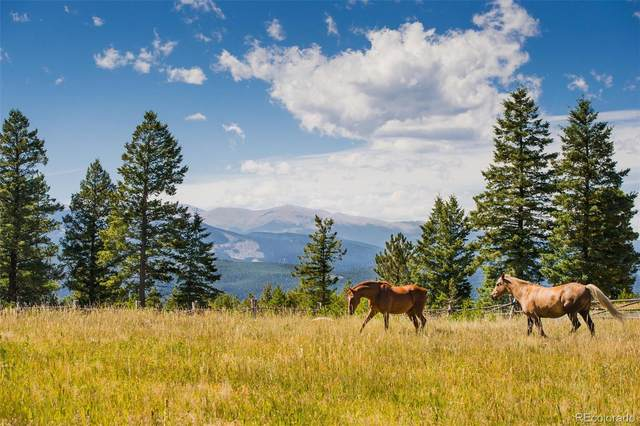 0-#20 Betts Ranch Road, Parker, CO 80134 (MLS #9417544) :: Find Colorado Real Estate