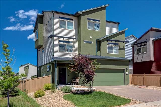 4235 Coriander Street, Castle Rock, CO 80109 (#9419870) :: iHomes Colorado