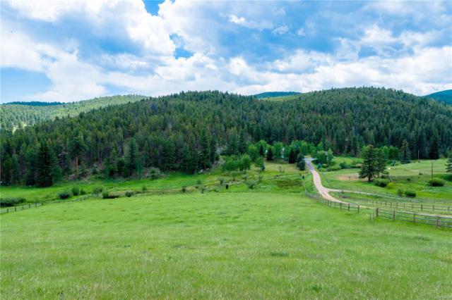 924 Yankee Creek Road, Evergreen, CO 80439 (#9429424) :: The Galo Garrido Group