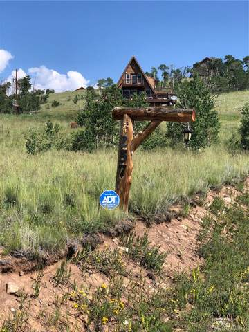 257 Round Hill Road, Fairplay, CO 80440 (#9433244) :: Berkshire Hathaway HomeServices Innovative Real Estate
