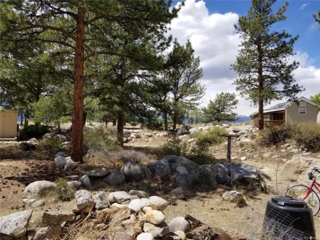 10795 County Road 197A, Nathrop, CO 81236 (#9434203) :: The Pete Cook Home Group