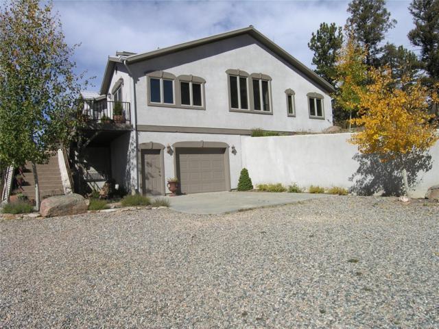 0628 Burno Mountain Road, Cotopaxi, CO 81223 (#9439489) :: Wisdom Real Estate