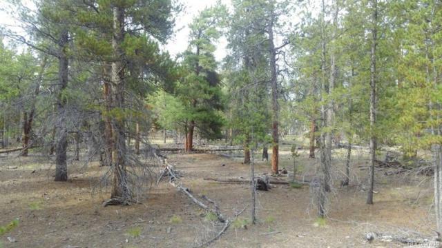 701 Cedar, Twin Lakes, CO 81251 (#9445126) :: Bring Home Denver