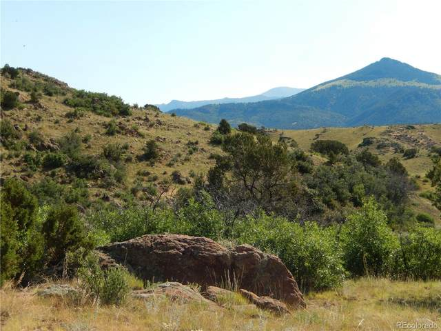 2401 County Road 11, Florissant, CO 80816 (#9445139) :: The DeGrood Team
