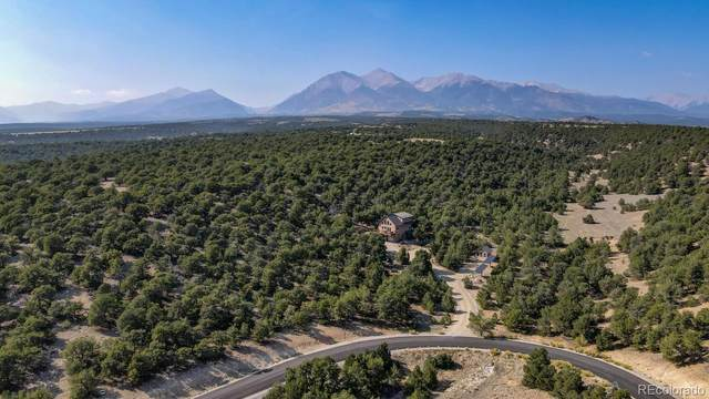 8851 Antlers Trail, Salida, CO 81201 (#9445216) :: You 1st Realty