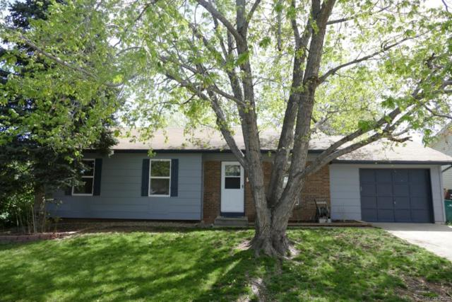 4672 S Yank Street, Morrison, CO 80465 (#9445629) :: The Pete Cook Home Group