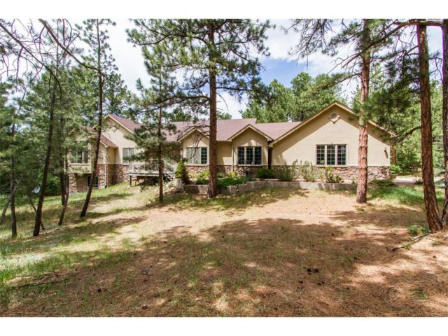 1905 Cinnamon Court, Larkspur, CO 80118 (MLS #9445947) :: 8z Real Estate