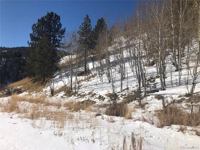 311 Beaver Pond Road, Divide, CO 80814 (MLS #9454406) :: 8z Real Estate