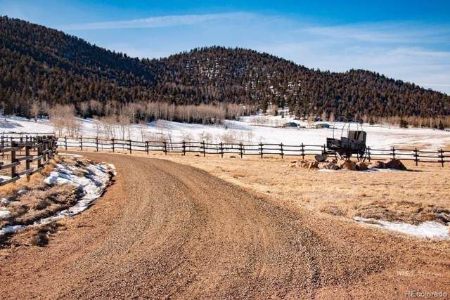 200 Eagle Springs Road, Westcliffe, CO 81252 (#9454427) :: Bring Home Denver with Keller Williams Downtown Realty LLC