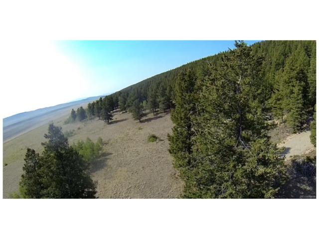 1676 Redhill Road, Fairplay, CO 80440 (MLS #9455129) :: 8z Real Estate