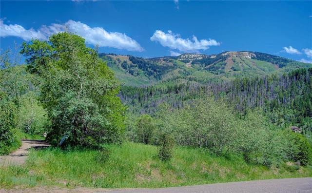 2224 Golf View Way, Steamboat Springs, CO 80487 (#9457090) :: Hometrackr Denver