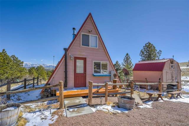 354 Witcher Mountain Trail, Guffey, CO 80820 (#9457989) :: Finch & Gable Real Estate Co.