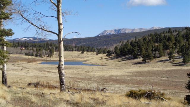 2092 Forbes Park Road, Fort Garland, CO 81133 (#9458165) :: Hometrackr Denver