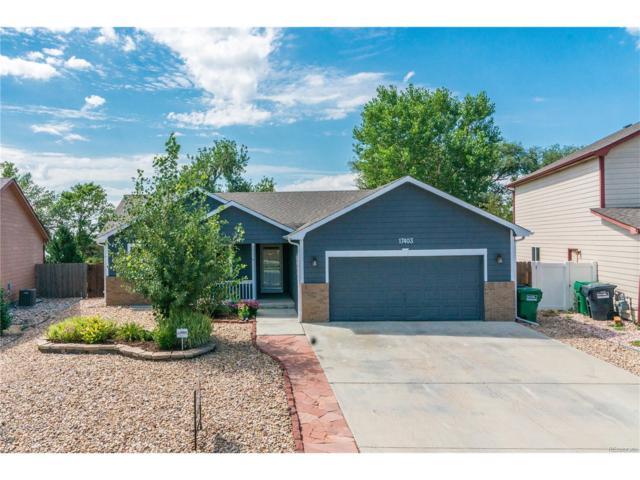 17403 Margil Road, Mead, CO 80542 (MLS #9458493) :: 8z Real Estate