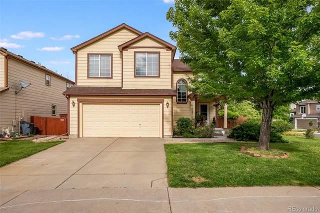 8552 Sweet Clover Way, Parker, CO 80134 (#9458540) :: Kimberly Austin Properties