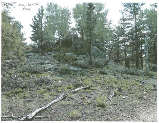 00 County Rd 140, Idaho Springs, CO 80452 (#9460429) :: Structure CO Group