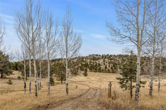 34131 Natural Spring Road, Pine, CO 80470 (MLS #9461276) :: 8z Real Estate
