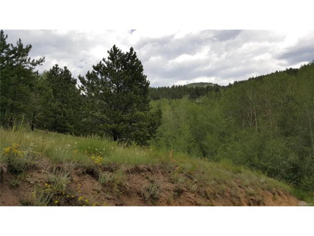 1835-21-2-00-605 Road, Idaho Springs, CO 80452 (#9461283) :: Wisdom Real Estate