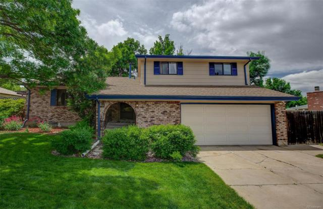 13193 Canopus Drive, Littleton, CO 80124 (#9462508) :: The DeGrood Team