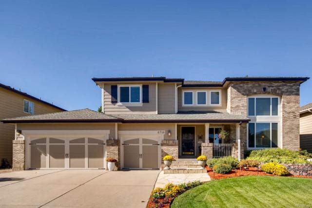 6716 Millstone Street, Highlands Ranch, CO 80130 (#9464267) :: Wisdom Real Estate