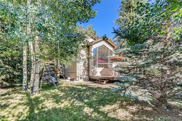 123 Boreas Pass Road, Breckenridge, CO 80424 (#9465418) :: The DeGrood Team