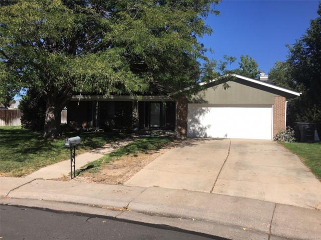 10994 Ash Place, Thornton, CO 80233 (#9470589) :: The Peak Properties Group