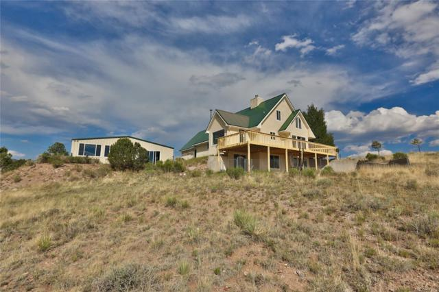 287 Choctaw Trail, Westcliffe, CO 81252 (#9471037) :: Structure CO Group