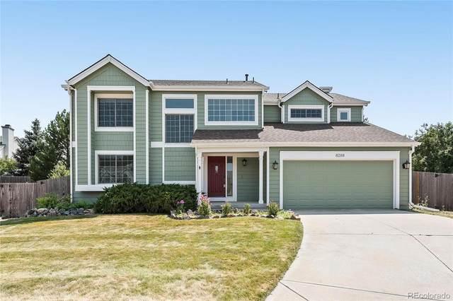 8288 W Chestnut Avenue, Littleton, CO 80128 (MLS #9473295) :: Clare Day with Keller Williams Advantage Realty LLC