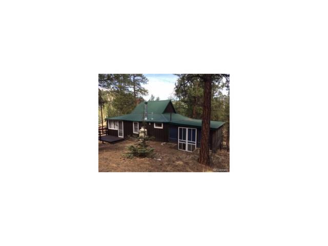 24322 Grant Avenue, Pine, CO 80425 (MLS #9474029) :: 8z Real Estate