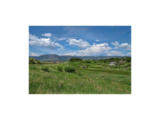 815 S Park Drive, Monument, CO 80132 (MLS #9475012) :: 8z Real Estate