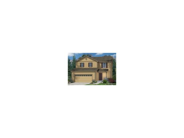 365 Tippen Place, Castle Rock, CO 80104 (MLS #9479089) :: 8z Real Estate