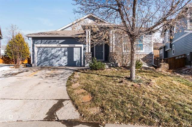 2738 Edmanston Way, Castle Rock, CO 80109 (#9480833) :: HomeSmart Realty Group