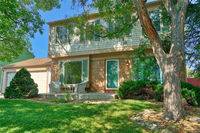 4701 S Vivian Street, Morrison, CO 80465 (#9483718) :: The Peak Properties Group