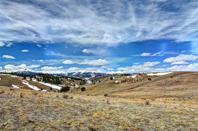 1457 Lippzana Road, Jefferson, CO 80456 (#9485332) :: Bring Home Denver with Keller Williams Downtown Realty LLC