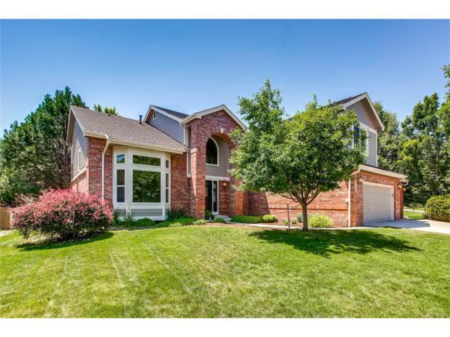 20570 E Regency Way, Parker, CO 80138 (MLS #9487386) :: 8z Real Estate