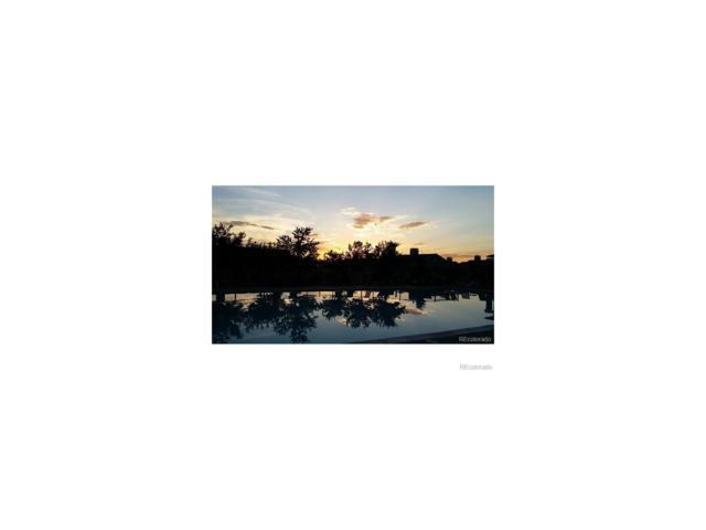 10184 Park Meadows Drive #1120, Lone Tree, CO 80124 (MLS #9488432) :: 8z Real Estate